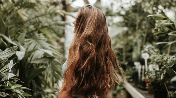 Poudre De Shikakai Pour Cheveux